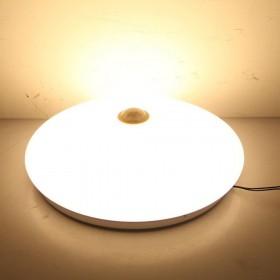 12W Warmweiß LED PIR  Sensorleuchte Deckenlampe mit Bewegungsmelder